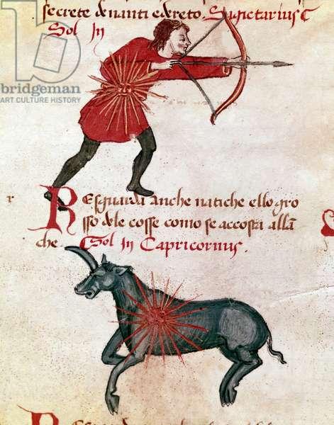 Zodiac signs: Sagittarius and capricorn. (miniature, 14th century)
