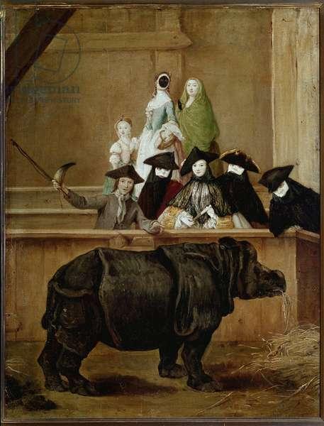 Rhinoceros: exhibition of Clara, Indian rhinoceros. Painting by Pietro Longhi (1702-1785). 1751. National Gallery, London.