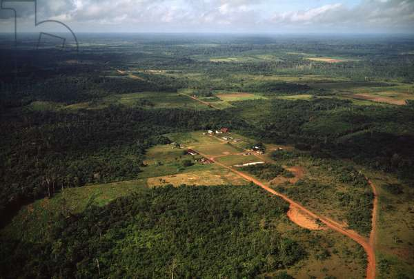 Aerial view of the deforestation areas, and the jungle with the railway line connecting the mine of Serra do Navio a Macapa in the state of Amapa, Brazil - Aerial view of deforestation of the jungle with the Sierra do Navio mine railroad connecting the mine with Macapa, Amapa state, Brazil - Photography - 1983