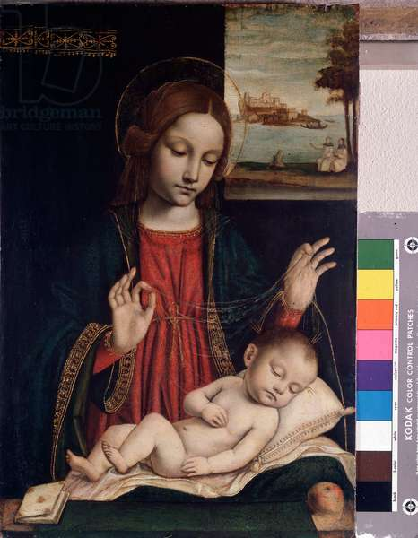 Madonna and Sleeping Child (Painting, 14th-15th century)