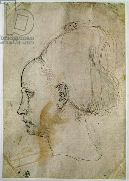 Young woman's head, profile to the left, 15th century (drawing)