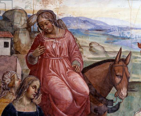 Benedict left his father's house and went to Rome to study Detail of the servant of Benoit, Cyrilla - Fresco of the cloitre realized by Antonio Bazzi dit il Sodoma (1477-1549) recounting the life of Saint Benedict of Nursia (480 - 567) founder of the Order of Benedictine 1515 03 - 1508 Abbey by Monte Oliveto Maggiore, Florence