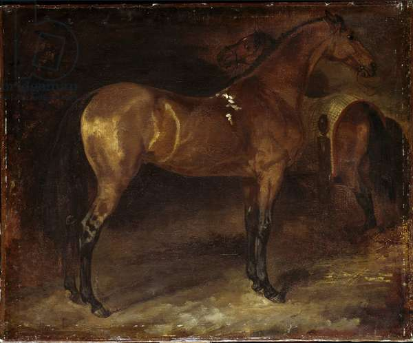 Spanish Horse - Painting by Theodore Gericault (1791-1824), oil on canvas, 50x60 cm. Paris, Louvre Museum