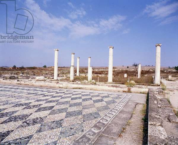 View of the ruins of the Atrium with pebble mosaic, 4th century BC