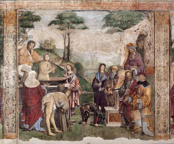 Life of St Cecilia: Martyrdom of the Saint (fresco, 1506)