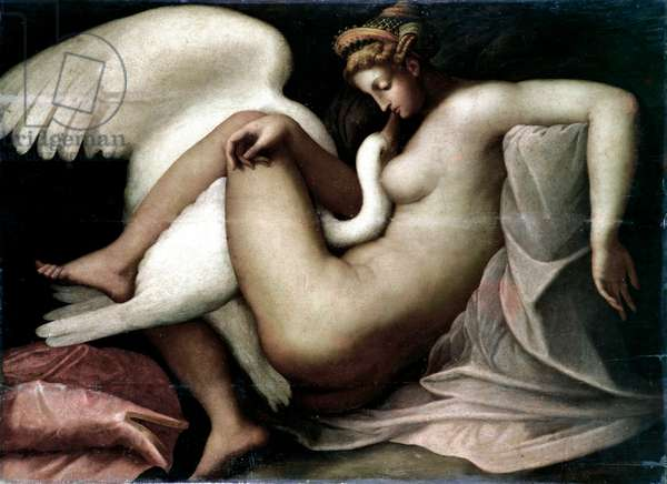 Leda and the swan Anonymous painting after an original detruit by Michelangelo Buonarroti called Michelangelo (Michelangelo or Michelangelo, 1475 - 1564). 16th century Sun. 114x155 cm Venice, Musee Correr