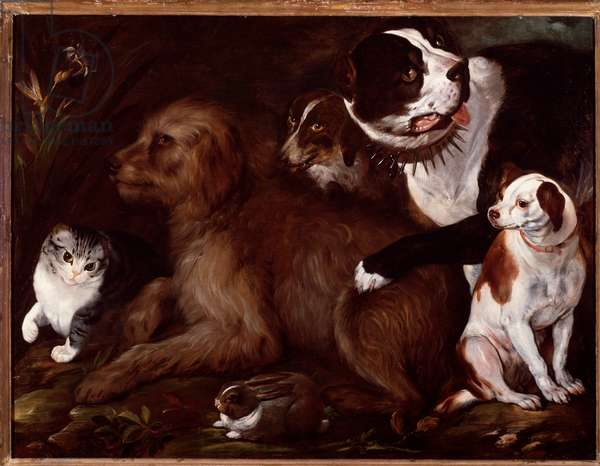 Medici dogs, with a cat and a rabbit from the Italian school, 15th-16th century (painting)