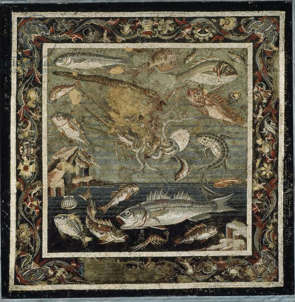 Roman Art: marine fauna Mosaic from the house of the fauna, Pompei, Italy 199-80 BC (Roman art: marine life, mosaic from the house of the faun 199-80 BC Museo Archeologico Nazionale, Naples inv 9997)