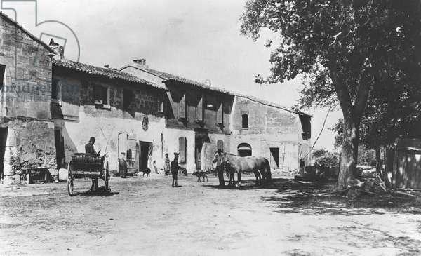 Mas in Camargue (b/w photo, c.1900)