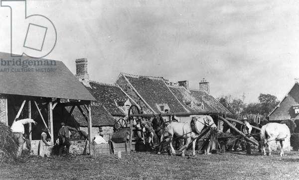 The threshing of the wheat in a farm yard (b/w Photo, c. 1900)