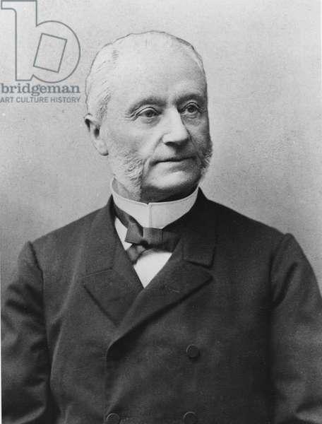 Portrait of Henri-Martin Barboux (1834-1910) (black and white photograph)