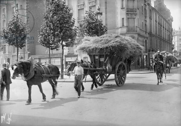 Requisitioning wheat and straw for the army, Paris, 1914 (b/w photo)