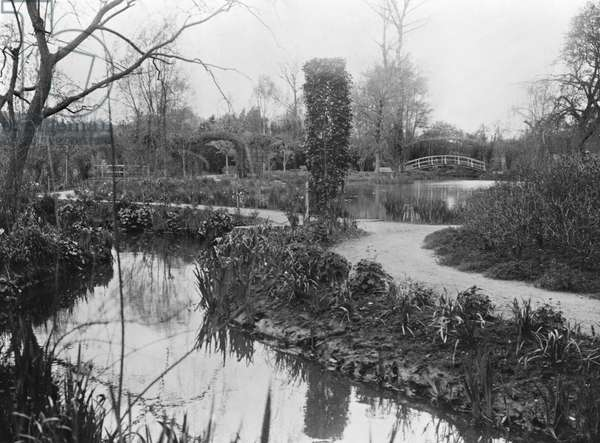 Claude Monet's (1840-1926) Garden at Giverny, 1914 (b/w photo)