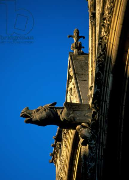 Gargoyle of Laon Cathedral in Aisne (02)