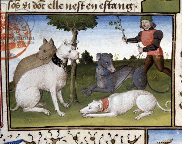 """Hunting Dogs - in """""""" Hunting Book of Gaston Phoebus, Count of Foix, Lord of Béarn"""""""", 14th century"""