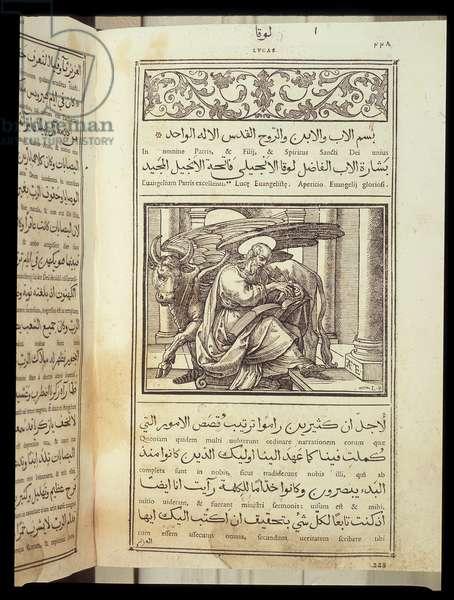 "Saint Luke the Evangelist in ""The Bible"""" written in Latin and Arabic."
