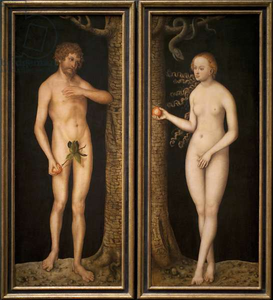 Adam and Eve, c.1510-20 (oil on wood)