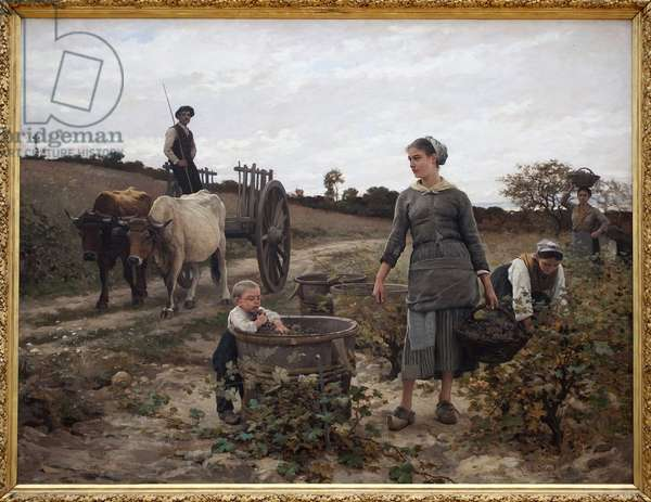 Corner of vine; Languedoc. Rural scene with a man on a cart, women picking grapes and a child eating the harvested fruits. Painting by Edouard Debat Ponsan (1847-1913), Oil On Canvas, 1886. Museum of Fine Arts of Nantes.