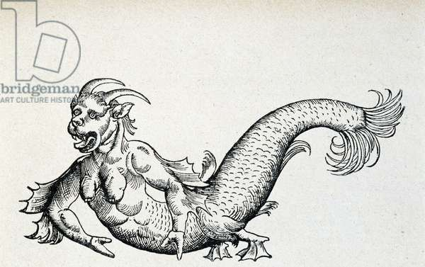 Sea devil, supposedly captured in the Adriatic Sea at the beginning of the 15th century - according to Gesner, 1558