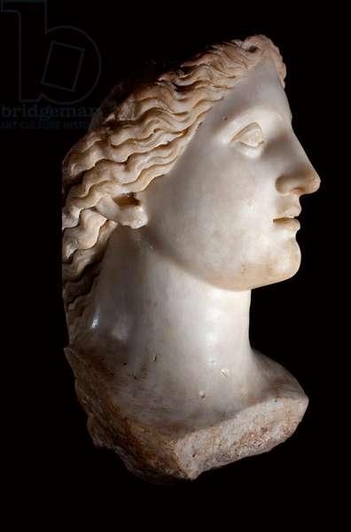 Head of the Goddess Junon - White marble sculpture, Roman period, Banasa (Morocco) - Musee d'Archeologie de Rabat, Morocco