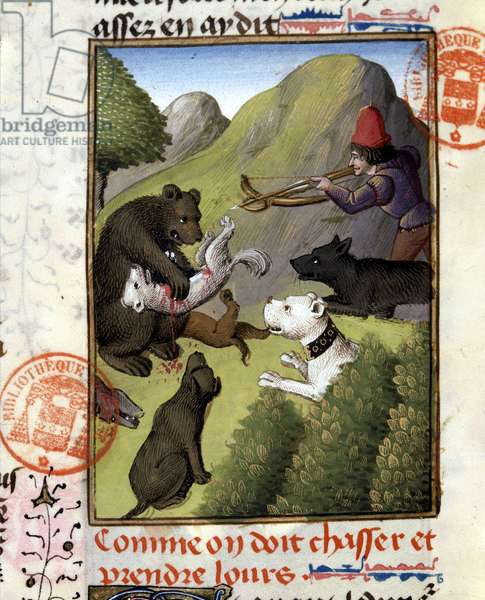 """Bear Hunt - in """""""" The Hunting Book of Gaston Phoebus, Count of Foix, Lord of Béarn"""""""", 14th century"""