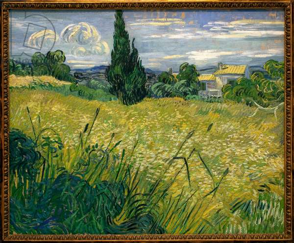 But Green - Painting by Vincent Van Gogh (1853-1890), Oil On Canvas, 1889 - French Art, 19th century - Veletrzni Palace (Fairs Palace), Prague (Czech Republic)