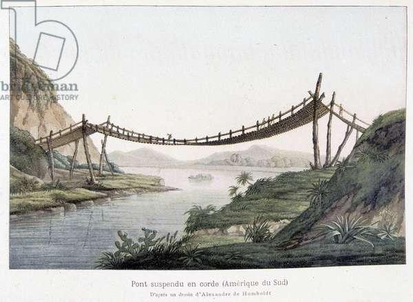 Rope suspension bridge in South America, based on a drawing by Alexander Von Humboldt (Alexander de Humboldt, 1769-1859)