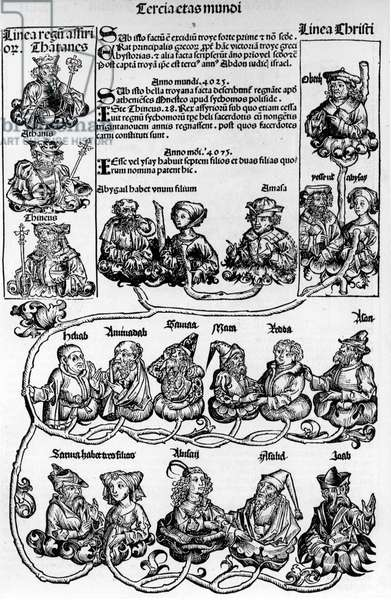 "Family tree, Jesse's tree; Nuremberg chronicle, 1493 - in """" Liber Cronicarum... """", H. Schedel, ed. Anton Koberger, 12 July 1493."