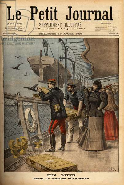 "Test of passenger pigeons, loose from the transatlantic connecting Le Havre to New York. Engraving in """" Le petit journal"""" 10/4/1898. Selva Collection."