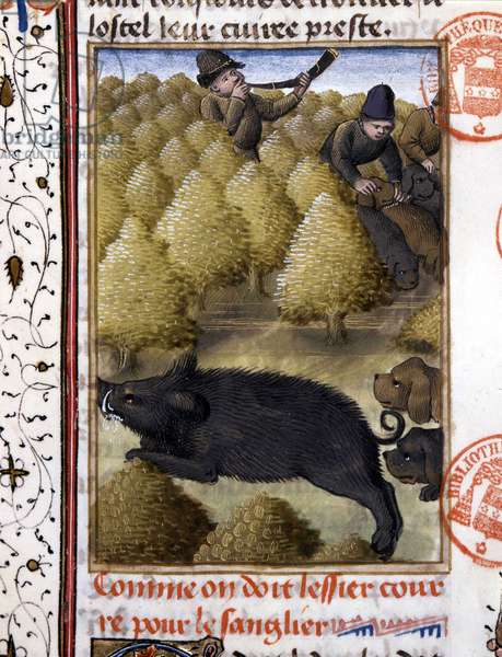 """Scene of hunting with a wild boar - in """""""" The Hunting Book of Gaston Phoebus, Count of Foix, Lord of Béarn"""""""", 14th century"""