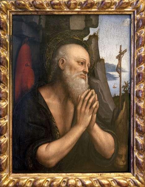 Saint Jerome Penitent. Painting by Giovanni Pedrini or Giovan Pietro Rizzi or Gian Pietro Rizzoli known as Giampietrino (active 1495 to 1549), oil on wood, Italian art, from the entourage of Leonard de Vinci (1452-1519), renaissance. Musee des Beaux Arts de Rouen.