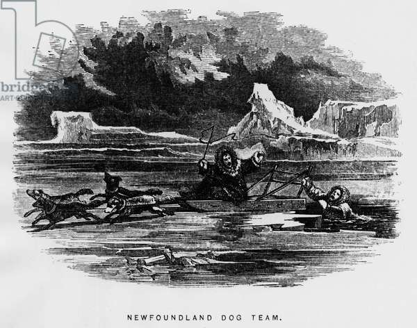 North pole: sled dog hovering a man falls through the ice - Elisha Kent Kane, Artic Exlorations in the years 1853-1855, Philadelphia, Childs and Peterson, 1856, vol. 1, p. 133.