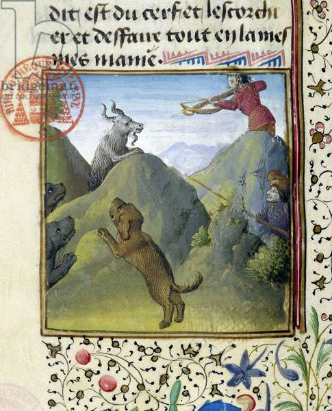 """Hunting a crossbow and hunting dogs - in """""""" Book of Hunting by Gaston Phoebus, Count of Foix, Lord of Béarn"""""""", 14th century"""