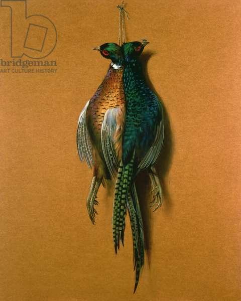 Pheasants, 1984 (oil on board)
