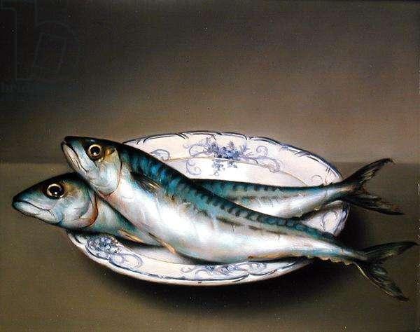 Mackerel, 1982 (oil on board)