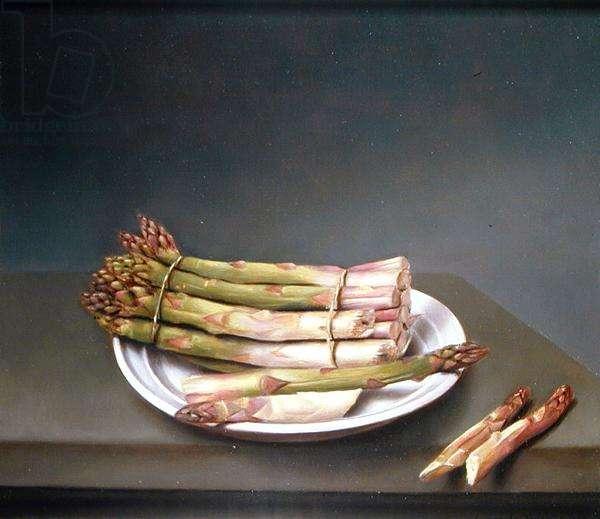 Asparagus, 1981 (oil on canvas)