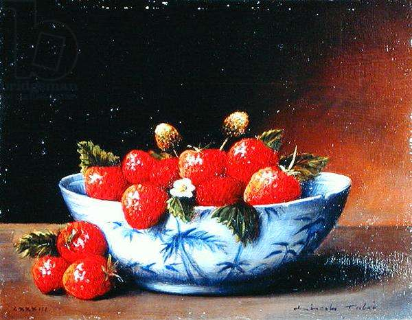 Bowl of Strawberries, 1984 (oil on board)