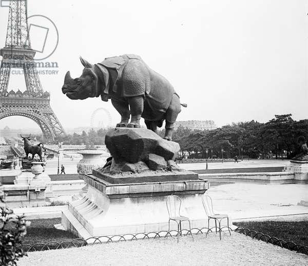 France, Ile-de-France, Paris (75): Trocadero Gardens, Rhinoceros, in the background, Eiffel Tower and Ferris Wheel, 1905