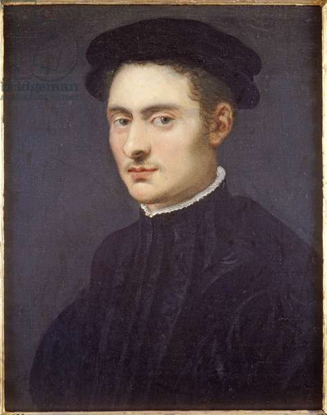 Bust Portrait of a Young Man in Black, c.1560s (oil on canvas)