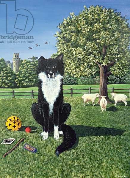 Lemmy the Sheep Dog, 1980 (gouache)