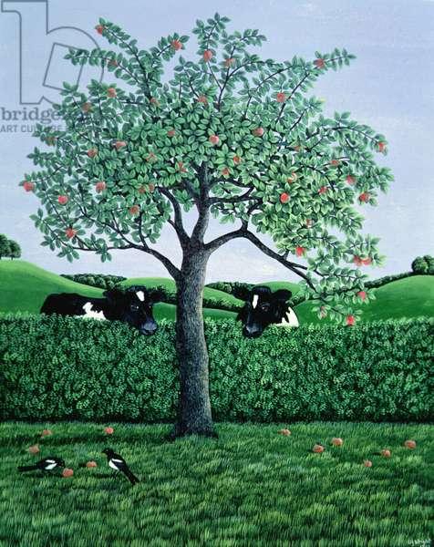 Cows under an Apple Tree, 1981 (gouache)