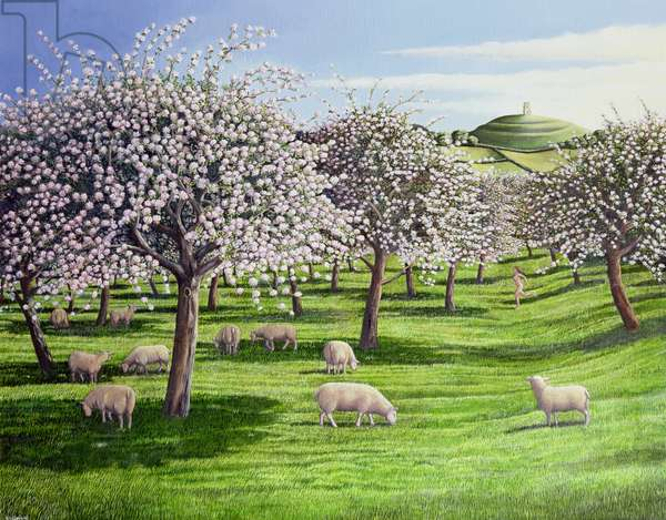 Celebration of Apple Blossom in Somerset, 2004 (oil on canvas)