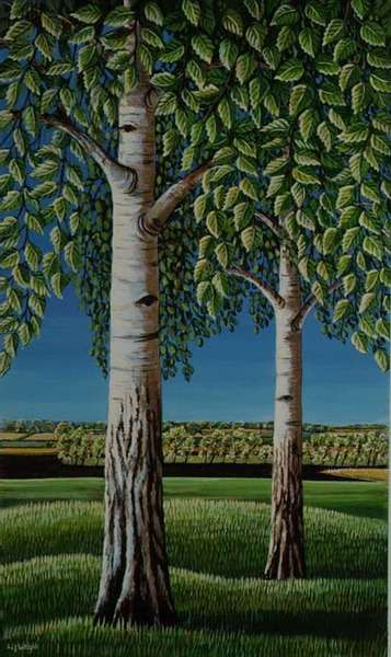 Silver Birches, 1993 (acrylic on paper)