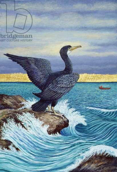 Cormorant on shag Rock, 2010 (acrylic on paper)