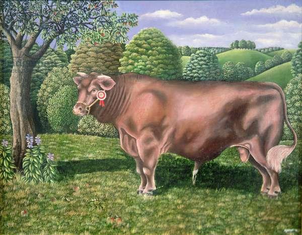 Prize Bull, 1979