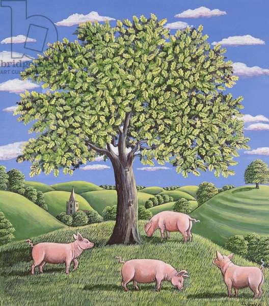 Pigs under an oak tree, 1985 (gouache)