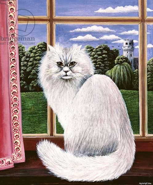 White cat at Warwick, 1979 (gouache)