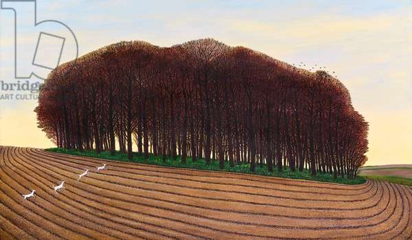 Dorset Clump of Trees, 2012 (oil on canvas)