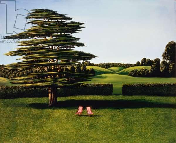 Cedar Tree, 1985