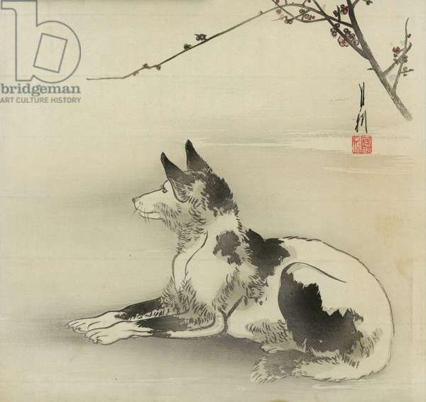 Black and white dog, 1910 (colour woodblock print)